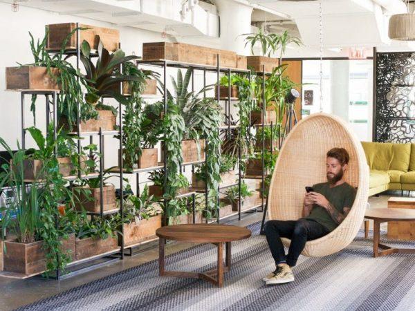 biophilia interior design